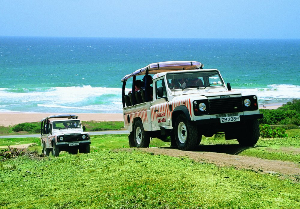 Island Safari: 4×4 Safari & Beach Break Combo [5½ Hrs] - 6th Oct