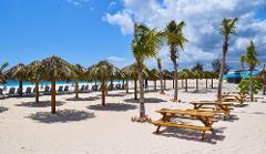 Beach Excursion-AG