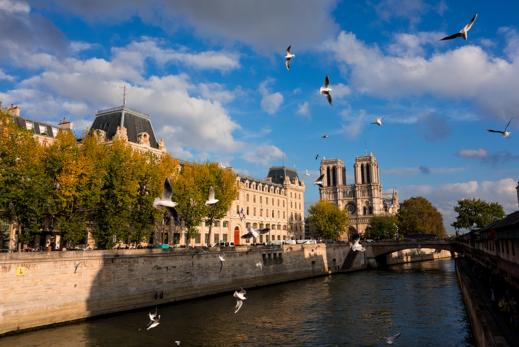 From Notre Dame to the Louvre Private Walking Tour
