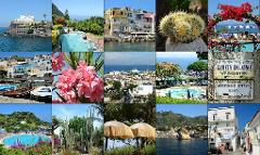 Ischia the wellness Island - 4 days