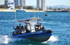 Island Adventure Boat Tour