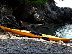 Zaton Bay Kayaking Half Day Trip - morning departure