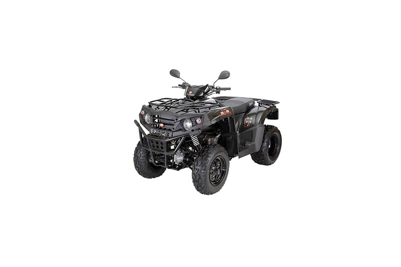 Quad Bike Half-Day Rent