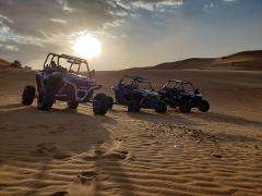 Midday Magic Buggy Tours - 2 Hours (Various Bookable Session Start Times)