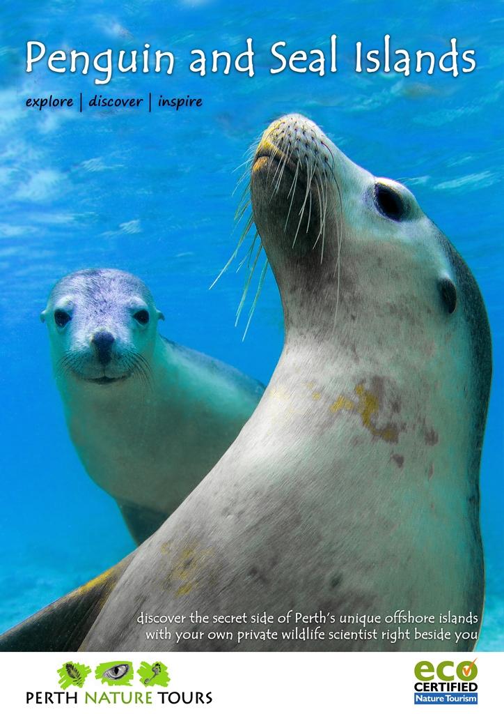 Penguin and Seal Island - Perth Western Australia