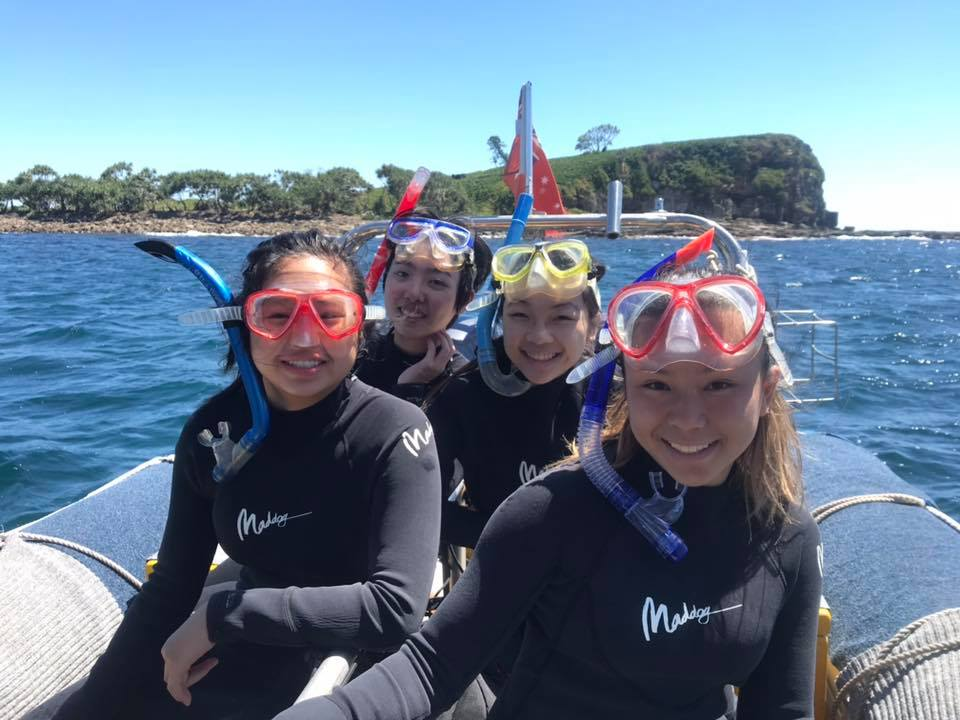 Snorkelling Adventure Sunshine Coast