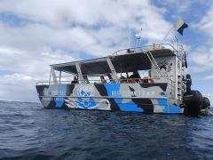 Reef Clean Team - Club Membership
