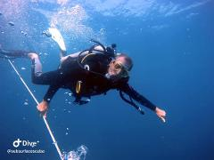 Open Water Course Dive 1 and 2