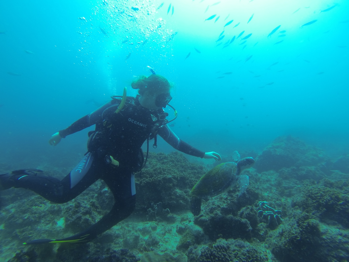 Scuba Diving Julian Rocks - Double Dive