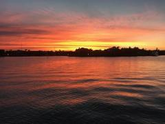 Sunset Cruise, Fish and Coral Viewing