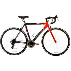 Adult Multi-Speed Touring Bike, Male - 26""