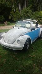 Daisy - 1969 VW Beetle Convertible