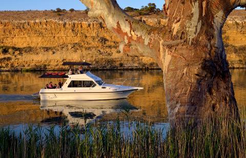 Yarra Cliffs Cruise