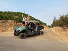 4x4 Private Vineyard Adventure Tour