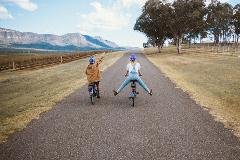 Bike Hire - Ingenia Holiday Park Cessnock Full Day
