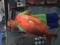 10 Hour Bottom Fishing | Patriot