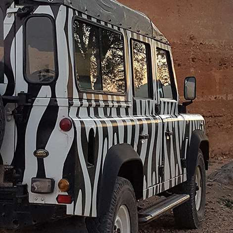 Arbez Zebra Jeep Safari Sunset