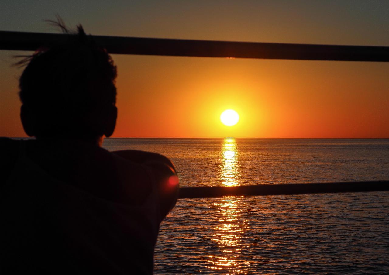 Roebuck Bay Sunset & Snubfin Dolphin Cruise