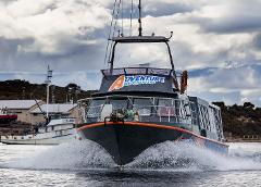 Seafood Bay Cruise