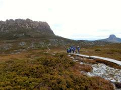 Bushwalker Transfer - Launceston to Cradle Mountain (Overland Track)