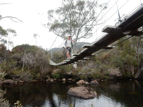 Bushwalker Transfer - Lake St Clair to Launceston