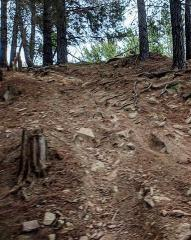 Steep and Deep Gravity Skills Clinic - Mystic Bike Park, Bright