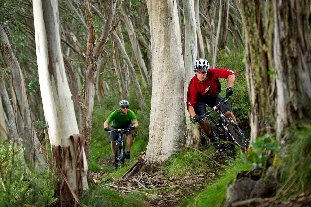 Mt Buller Bike Park Guided Ride