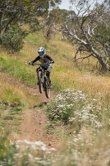 MBB | GRAVITY ENDURO BIKE SKILLS WEEKEND