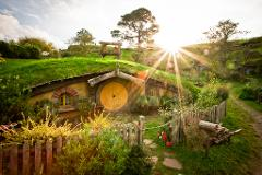 Auckland Day Tour: Hobbiton Movie Set  & Rotorua Geothermal Geysers Day Tour, Private Charter