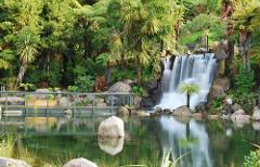 Shore Excursion From Tauranga: Rotorua Thermal Reserve Tour & Rainbow springs Combo Including Lunch