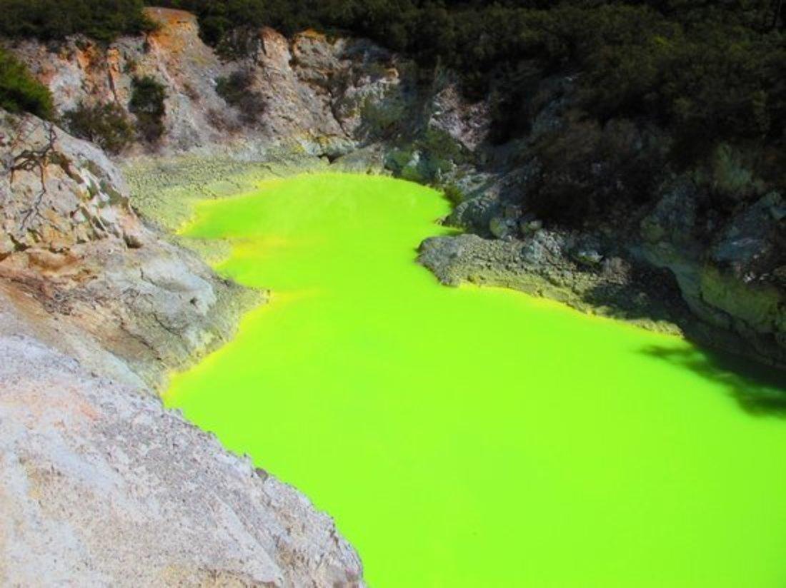 Rotorua Day Tour : Wai-O-Tapu : Lady Knox Geyser : Champagne Lake and Hot Bubbling Mud Small Group Morning Tour