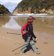 Guided 6 Day Great Ocean Walk, 104km, 7 nights accommodation, transfers, 12 Apostles, Loch Ard Gorge