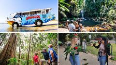 Aquaduck + Your choice of Gold Coast Hinterland Tour