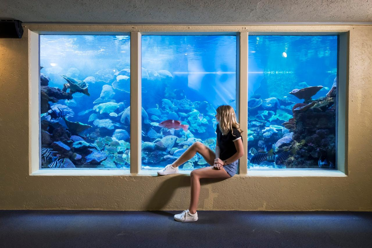 School Groups - Exclusive use of Aquarium 9am- 10am