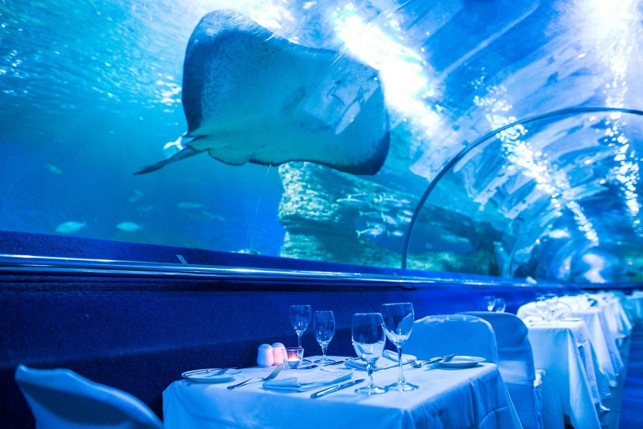 Christmas Dine Beneath the Seas