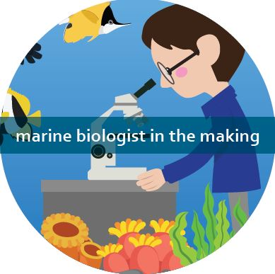 Mini Marine Biologist  - Toddlers Tuesdays