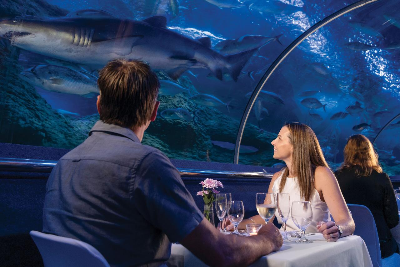 Exclusive Dine Beneath the Sea