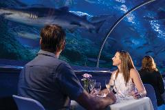 Exclusive Dine Beneath the Sea