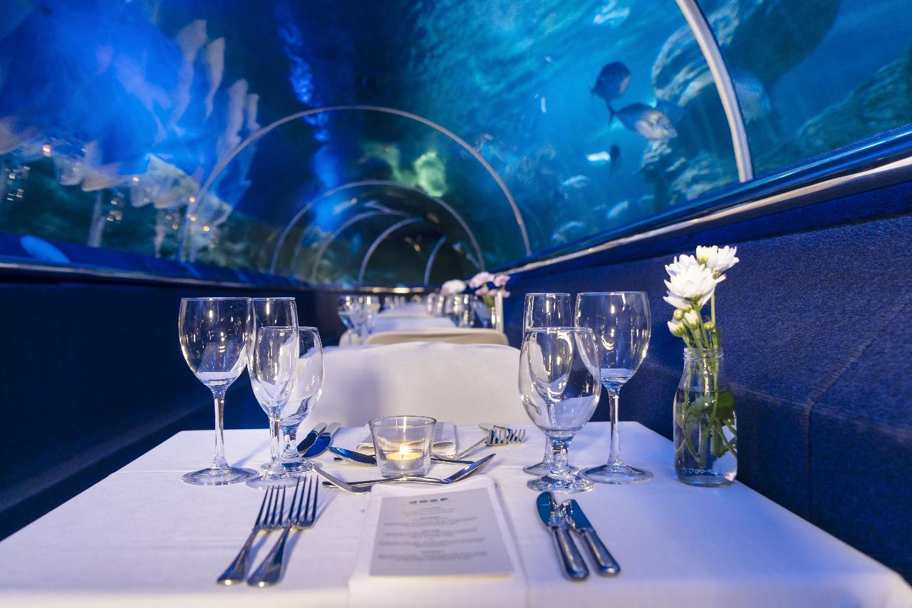 Dine Beneath the Sea - June