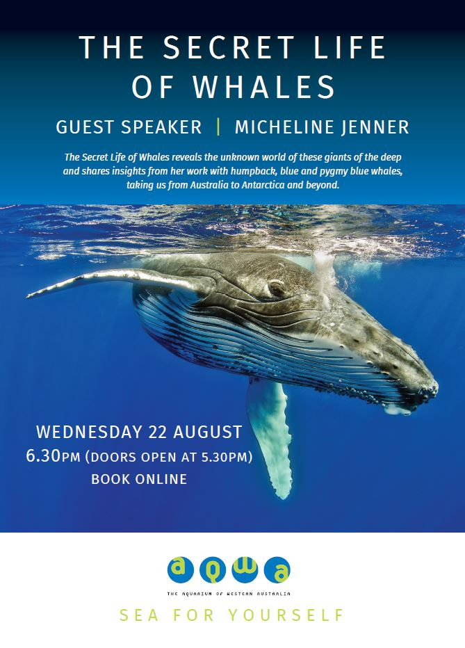 The Secret Life of Whales -Guest Speaker