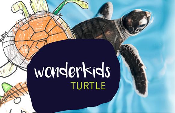Excursion Package - Visit & WonderKids Activity (+1 hour)