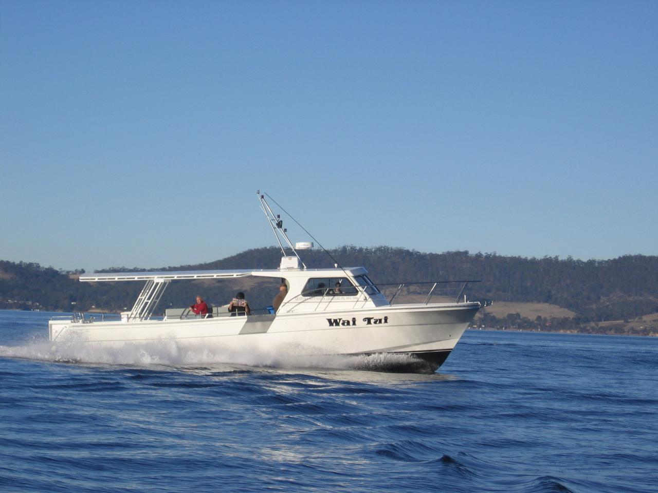 Wai Tui SOLE BOAT  Full Day Offshore Reef and Game Fishing Charter