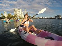 2 Hour Self Guided Single Kayak Hire