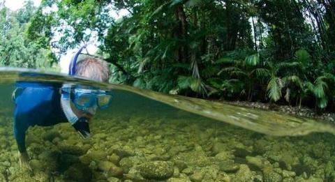 RIVER DRIFT SNORKELLING TOUR