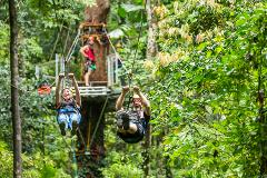 Daintree Adventure Day -  Gift Certificate