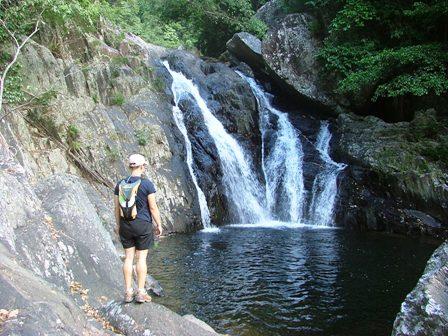 Spring Creek Bush Walking Tour
