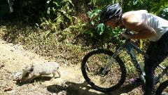 Mountain Biking, Jungle, & River Adventure (B6)
