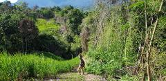 8-Day Trek, Pedal, & Paddle the Sarawak Rainforest (BM8B)