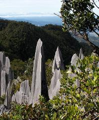 4-Day Mulu Caves & Pinnacle Expedition (C6)