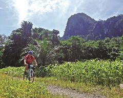 Borneo Outdoor Discovery: Orangutan, Off-Road Biking, & Caves (B10)